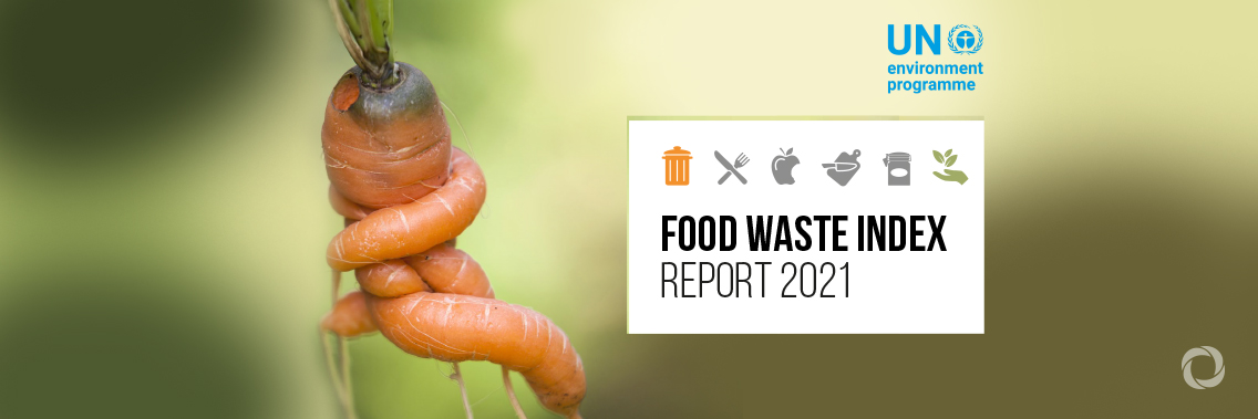 UN: 17% of all food available at consumer levels is wasted
